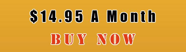 Hosting Buy Now 14.95