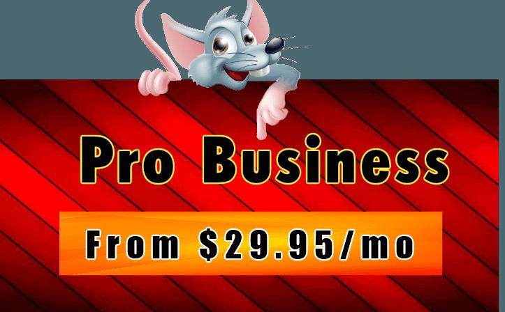 Hostrat Pro Business Hosting Plan