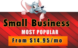 Hostrat Small Business Hosting Plan