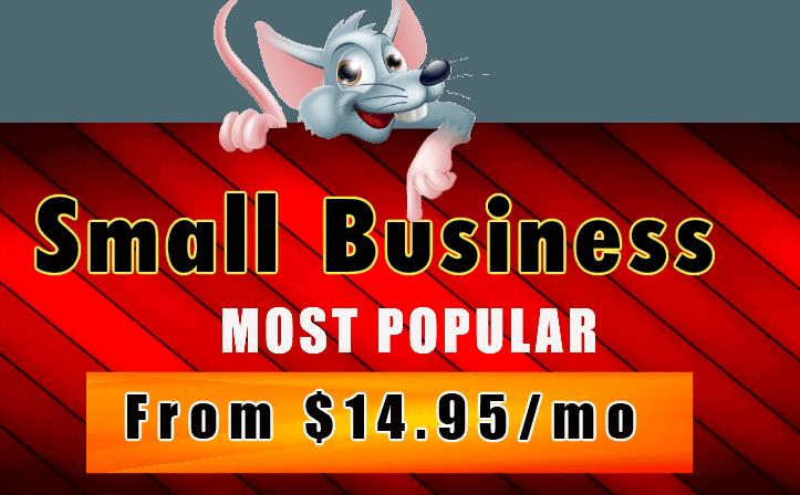 Hostrat Small Business Hosting Plan